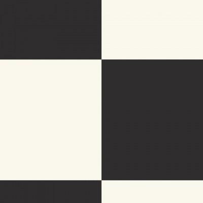 EXCLUSIVE 240 ECHIQUIER BLACK WHITE 5827077